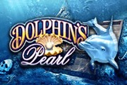Играть в казино в Жемчужину Дельфина